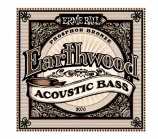 Ernie Ball Earthwood Acoustic Bass - 14183
